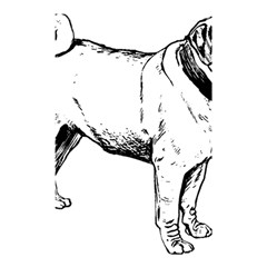 Pug Drawing Shower Curtain 48  x 72  (Small)