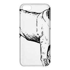 Pug Drawing Apple iPhone 5C Hardshell Case