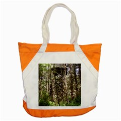Water Tower 1 Accent Tote Bag