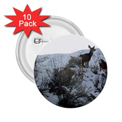 White Tail Deer 1 2.25  Buttons (10 pack)