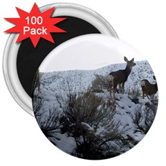 White Tail Deer 1 3  Magnets (100 pack)