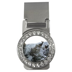 White Tail Deer 1 Money Clips (CZ)