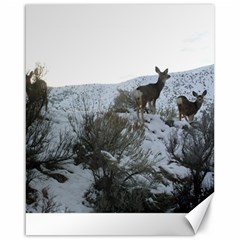 White Tail Deer 1 Canvas 16  x 20
