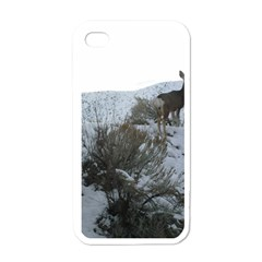 White Tail Deer 1 Apple iPhone 4 Case (White)