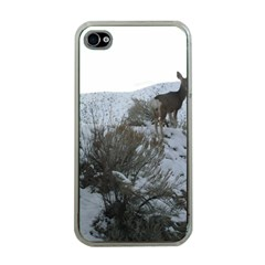 White Tail Deer 1 Apple iPhone 4 Case (Clear)