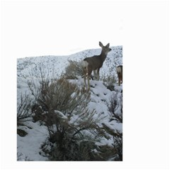 White Tail Deer 1 Small Garden Flag (Two Sides)