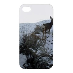 White Tail Deer 1 Apple iPhone 4/4S Premium Hardshell Case