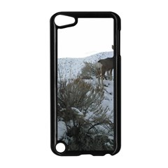 White Tail Deer 1 Apple iPod Touch 5 Case (Black)