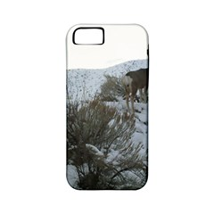 White Tail Deer 1 Apple iPhone 5 Classic Hardshell Case (PC+Silicone)