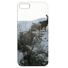 White Tail Deer 1 Apple iPhone 5 Hardshell Case with Stand