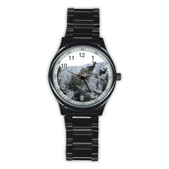 White Tail Deer 1 Stainless Steel Round Watch
