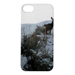 White Tail Deer 1 Apple iPhone 5S/ SE Hardshell Case