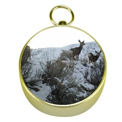 White Tail Deer 1 Gold Compasses