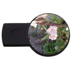 Wildflowers On The Boise River USB Flash Drive Round (2 GB)