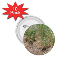 Wildflowers 1.75  Buttons (10 pack)