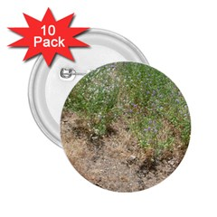 Wildflowers 2.25  Buttons (10 pack)