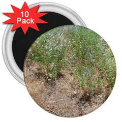 Wildflowers 3  Magnets (10 pack)