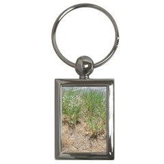 Wildflowers Key Chains (Rectangle)