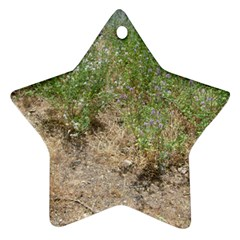 Wildflowers Star Ornament (Two Sides)