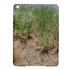 Wildflowers iPad Air 2 Hardshell Cases