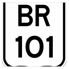Brazil BR-101 Transcoastal Highway  Large Satin Scarf (Square)