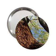 Willow Tree Reaching Skyward 2.25  Handbag Mirrors