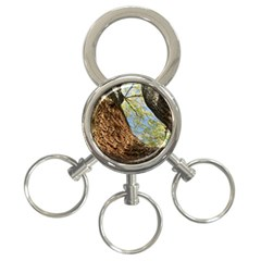 Willow Tree Reaching Skyward 3-Ring Key Chains