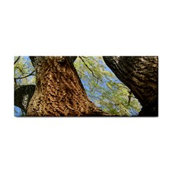 Willow Tree Reaching Skyward Cosmetic Storage Cases