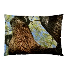 Willow Tree Reaching Skyward Pillow Case