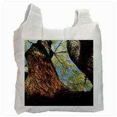 Willow Tree Reaching Skyward Recycle Bag (One Side)