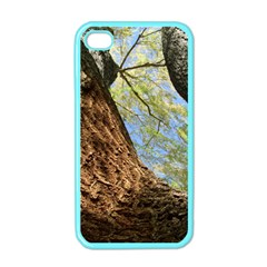 Willow Tree Reaching Skyward Apple iPhone 4 Case (Color)