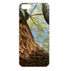 Willow Tree Reaching Skyward Apple iPhone 5 Seamless Case (White)