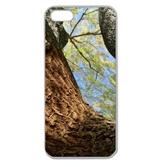 Willow Tree Reaching Skyward Apple Seamless iPhone 5 Case (Clear)
