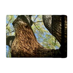 Willow Tree Reaching Skyward Apple iPad Mini Flip Case