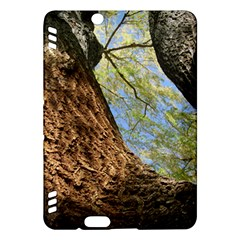 Willow Tree Reaching Skyward Kindle Fire HDX Hardshell Case