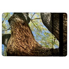 Willow Tree Reaching Skyward iPad Air Flip