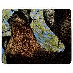 Willow Tree Reaching Skyward Jigsaw Puzzle Photo Stand (Rectangular)