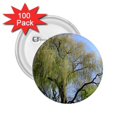 Willow Tree 2.25  Buttons (100 pack)