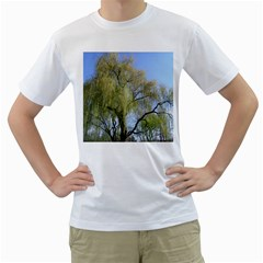 Willow Tree Men s T Shirt (white) (two Sided)