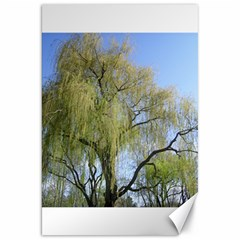 Willow Tree Canvas 20  x 30