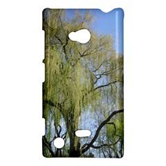 Willow Tree Nokia Lumia 720
