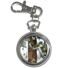 Winter Tree At Bogus Basin Key Chain Watches