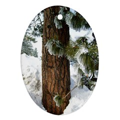 Winter Tree At Bogus Basin Oval Ornament (Two Sides)