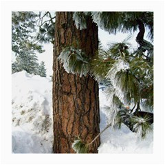 Winter Tree At Bogus Basin Medium Glasses Cloth (2-Side)