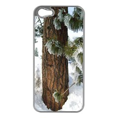 Winter Tree At Bogus Basin Apple iPhone 5 Case (Silver)