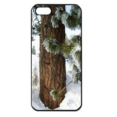 Winter Tree At Bogus Basin Apple iPhone 5 Seamless Case (Black)