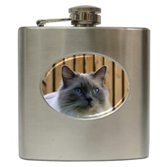 Ragdoll, Blue Hip Flask (6 oz)
