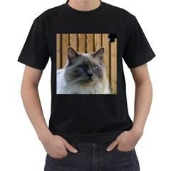 Ragdoll, Blue Men s T-Shirt (Black) (Two Sided)