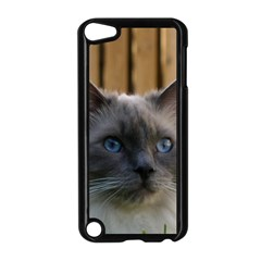 Ragdoll, Blue Apple iPod Touch 5 Case (Black)