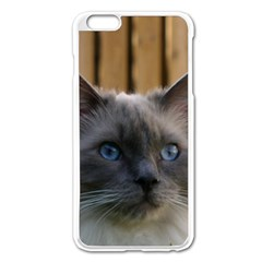 Ragdoll, Blue Apple iPhone 6 Plus/6S Plus Enamel White Case